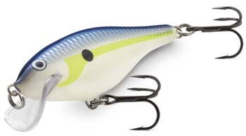 rapala_scatter rap_shad_head