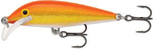rapala_scatter rap_cd_GFR