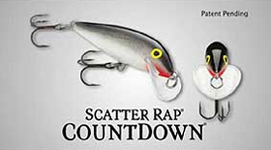 scatter rap cd
