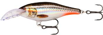 rapala scatter shad rap deep ROHL